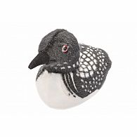 Audubon Bird II Common Loon