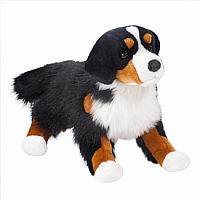 Alps Bernese Mountain Dog